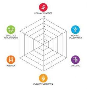 Het spinnenweb van Positieve Gezondheid