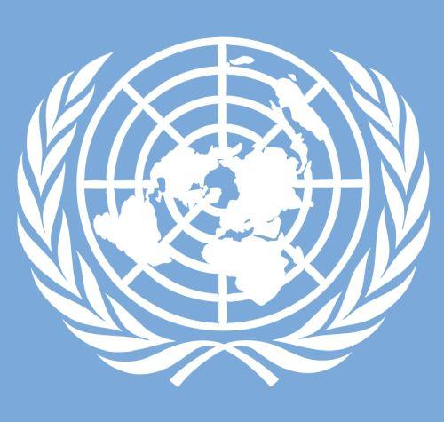 5 jaar VN-verdrag Handicap, samen optrekken om onbeperkt meedoen nog meer mogelijk te maken